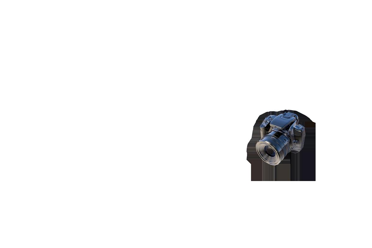 Patrice Amyot Photographe